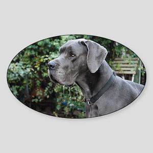 Blue Great Dane head Sticker (Oval)
