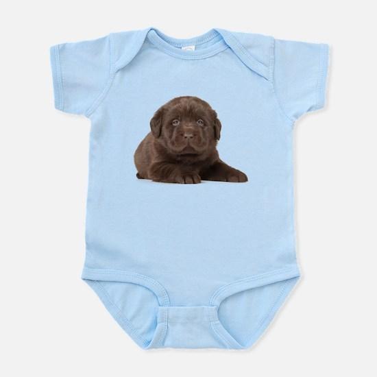 Chocolate Lab Puppy Infant Bodysuit