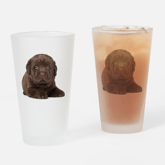 Chocolate Lab Puppy Drinking Glass