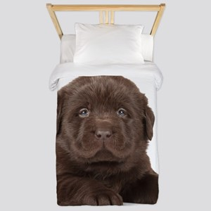 Chocolate Lab Puppy Twin Duvet