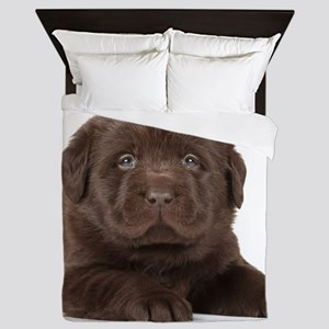 Chocolate Lab Puppy Queen Duvet