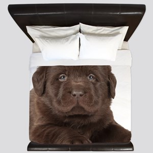 Chocolate Lab Puppy King Duvet