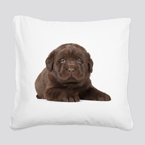 Chocolate Lab Puppy Square Canvas Pillow
