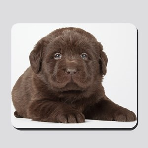 Chocolate Lab Puppy Mousepad