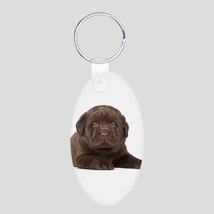 Chocolate Lab Puppy Aluminum Oval Keychain