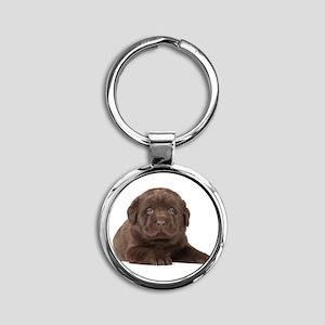 Chocolate Lab Puppy Round Keychain