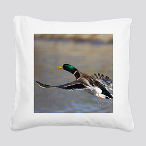duck in flight Square Canvas Pillow