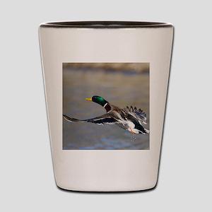 duck in flight Shot Glass
