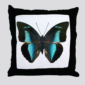 ARCHAEOPREPONA AMPHIMACHUS D Throw Pillow