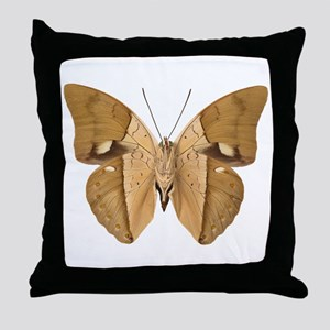 ARCHAEOPREPONA AMPHIMACHUS V Throw Pillow