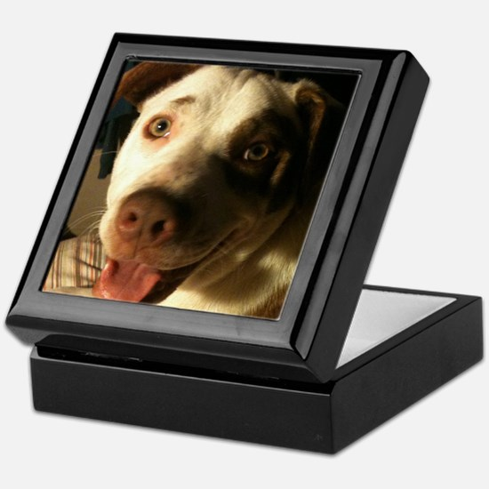 Biscuit the happy pit bull Keepsake Box