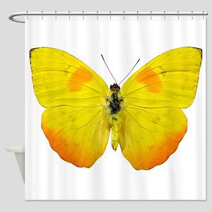 PHOEBIS PHILEA Shower Curtain