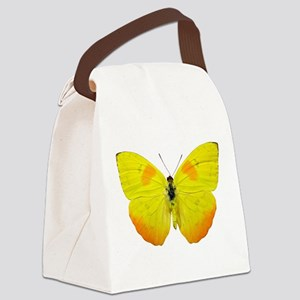 PHOEBIS PHILEA Canvas Lunch Bag