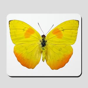 PHOEBIS PHILEA Mousepad
