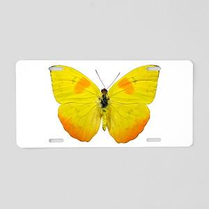 PHOEBIS PHILEA Aluminum License Plate