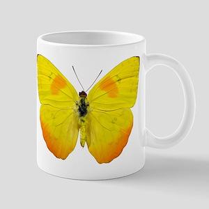 PHOEBIS PHILEA Mug