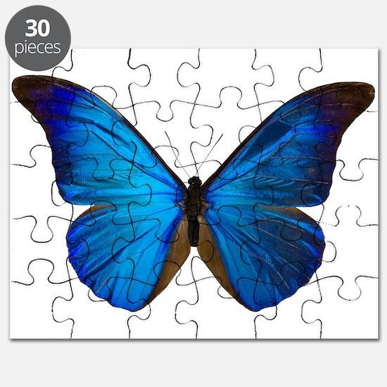 MORPHO RHETENOR D Puzzle