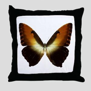 MORPHO HECUBA D Throw Pillow