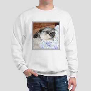 Cuddly Yorki-Poo Mix Sweatshirt