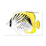 Threadfin Butterlyfish Posters