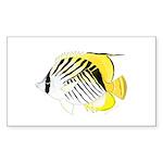 Threadfin Butterlyfish Sticker