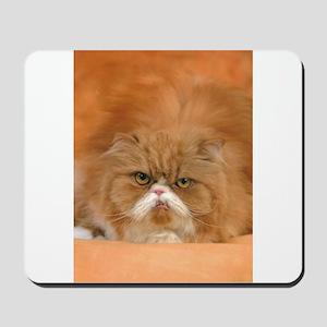 I Love Grumpy Persian Cats! Mousepad