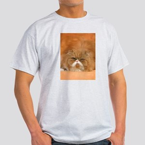 I Love Grumpy Persian Cats! T-Shirt