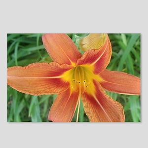 Big orange Postcards (Package of 8)