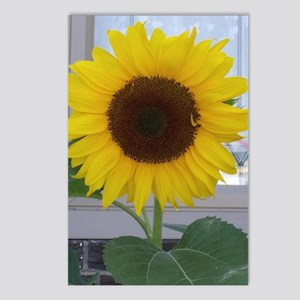 sunflower Postcards (Package of 8)