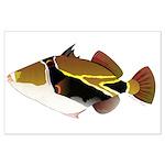 Reef Triggerfish Humuhumu Posters