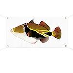 Reef Triggerfish Humuhumu Banner