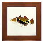 Reef Triggerfish Humuhumu Framed Tile