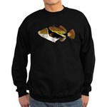 Reef Triggerfish Humuhumu c Sweatshirt