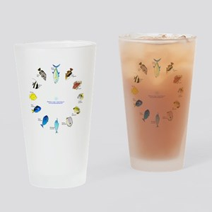 Pacific and Indian Ocean Reef Fish Clock 2 Drinkin