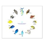 Pacific and Indian Ocean Reef Fish Clock 2 Posters