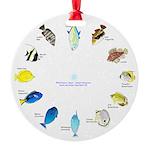 Pacific and Indian Ocean Reef Fish Clock 2 Ornamen