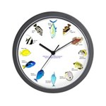 Pacific and Indian Ocean Reef Fish Clock 2 Wall Cl