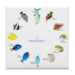 Pacific and Indian Ocean Reef Fish Clock 2 Tile Co