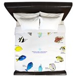 Pacific and Indian Ocean Reef Fish Clock 2 King Du