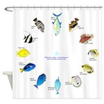 Pacific and Indian Ocean Reef Fish Clock 2 Shower