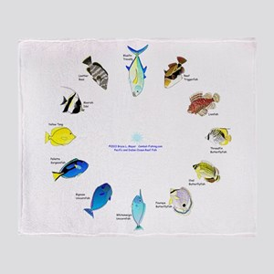 Pacific and Indian Ocean Reef Fish Clock 2 Throw B