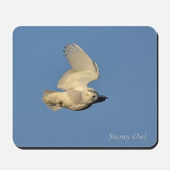 Snowy Landing Mousepad