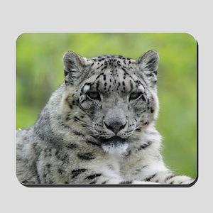 Leopard010 Mousepad