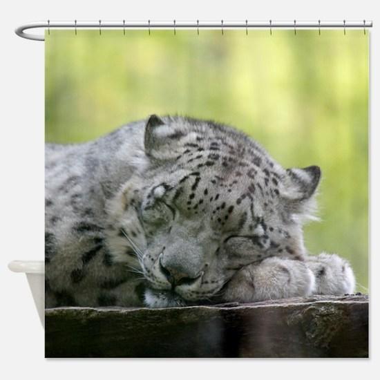 Cute Cat photos Shower Curtain