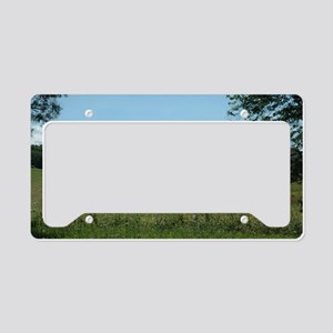 WV Tobacco Barn License Plate Holder