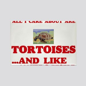 All I care about are Tortoises Magnets
