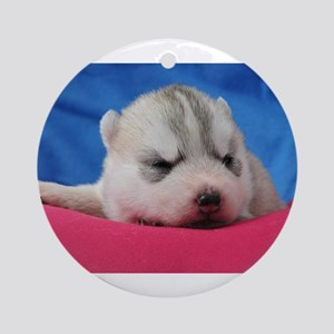 Husky Puppy Ornament (Round)