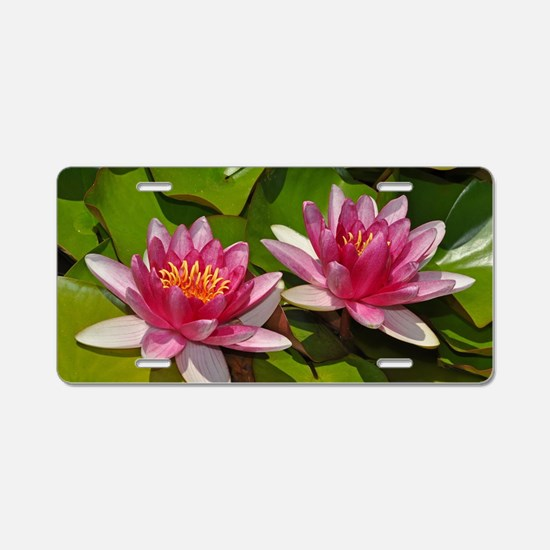 Pink water lilies Aluminum License Plate