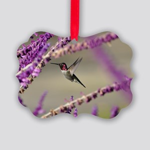 Male Anna's Hummingbird Picture Ornament