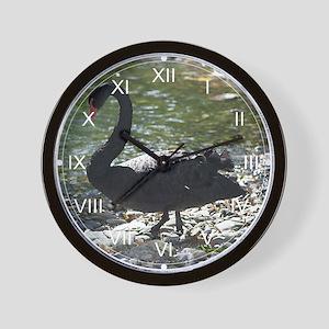 Black Swan Contemplating Wall Clock